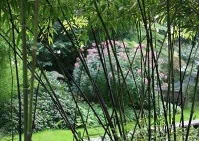 slider_09022015-Tuin van de Tijd 5 Femke van Dam Bunne
